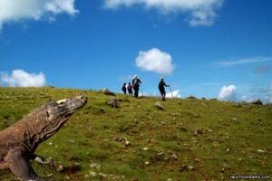Komodo National Park2